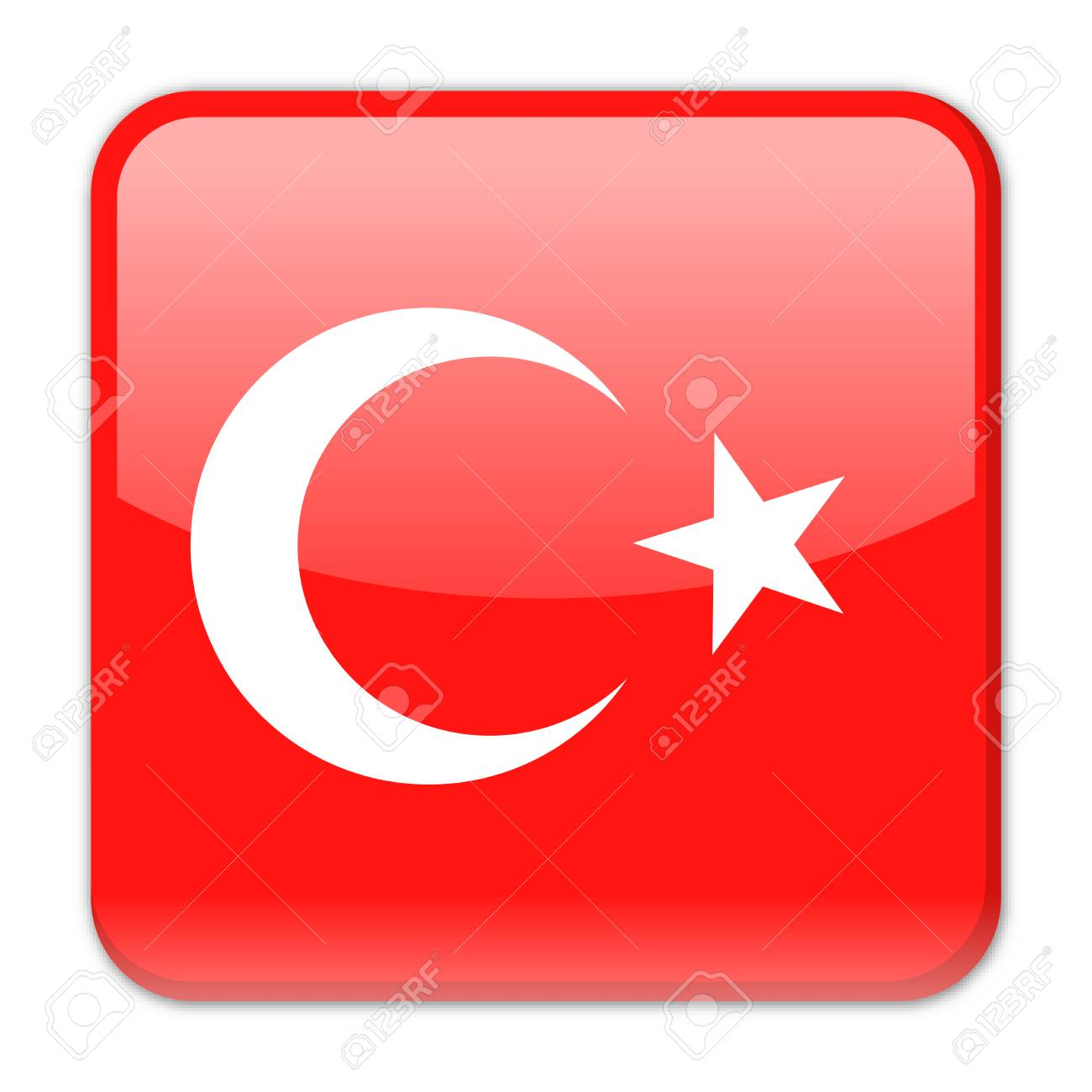 TURKEY VISA  S1 TYPE 2